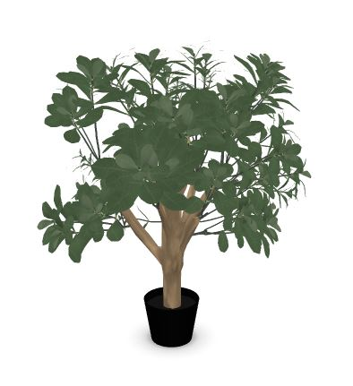 Febru Pittosporum kunstplant 65 cm  591155 1