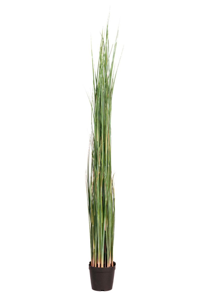 Götessons Gras in pot H1300 kunstplant  160009 1
