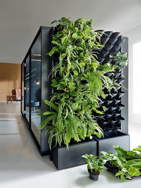Mikomax HUSH Green Walls
