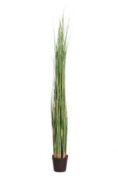 Götessons Gras in pot H1300 kunstplant  160009 0